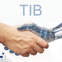 TIB 2011